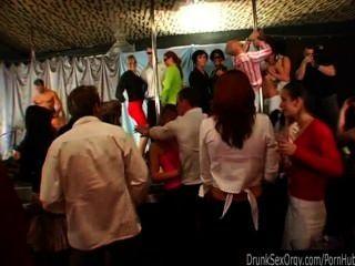 Chicas Del Club Ido Salvaje En La Fiesta